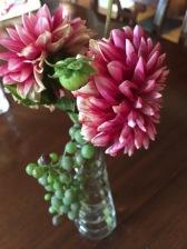Dahlias adorned with grapes