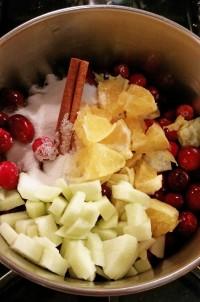 cranberry chutney2