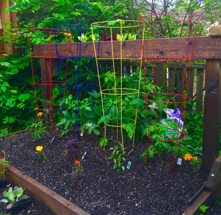 Entertaining Family: Raised Beds